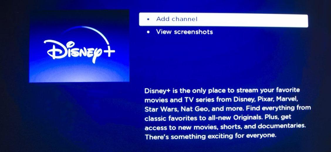 add Disney Plus to Roku
