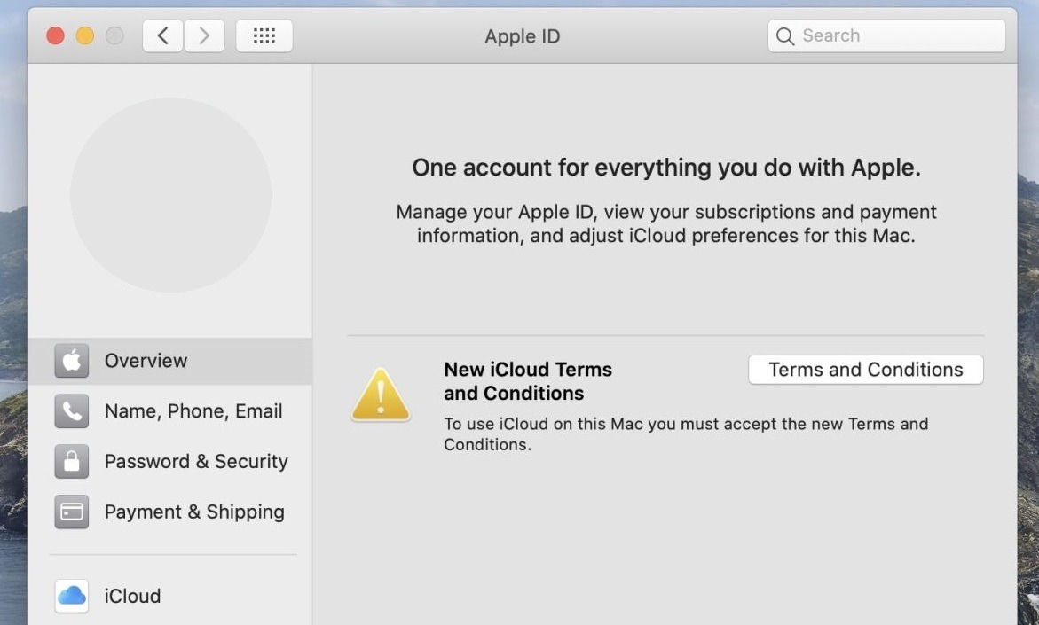 """How to Fix """"We could not complete your purchase"""" App Store on Mojave"""